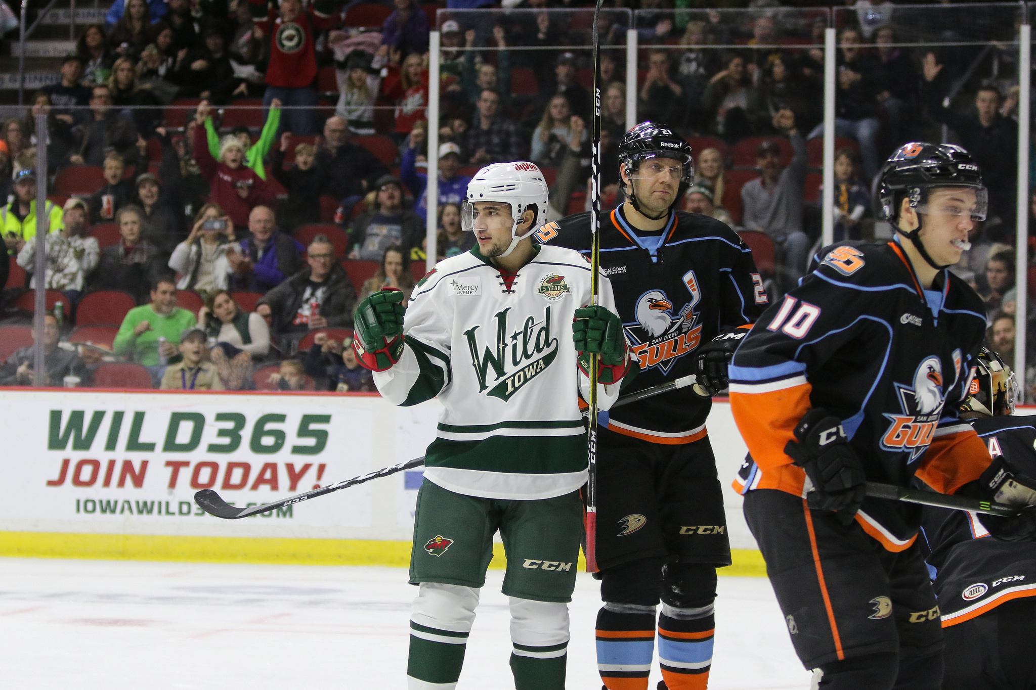 Iowa Wild vs. San Diego Gulls at Wells Fargo Arena